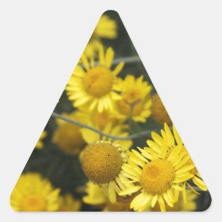 Serie botánica pegatina triangular