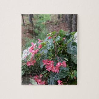 Serie botánica rompecabezas