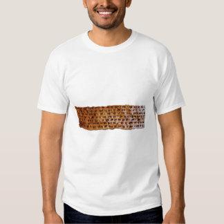 Serie CUNEIFORME SUMERIA de la camiseta de la Polera