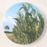 Serie de la granja---Campo de maíz en el GA Posavasos Cerveza