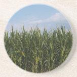 Serie de la granja---Campo de maíz en el GA Posavaso Para Bebida