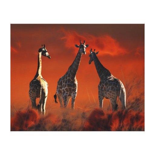 Serie de la jirafa a partir de la vida salvaje sur impresiones en lona estiradas