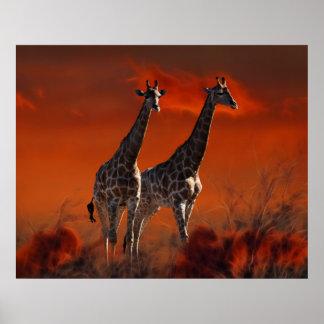 Serie de la jirafa a partir de la vida salvaje sur impresiones