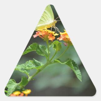 Serie de la mariposa de Lello Calcomanías De Trianguloes Personalizadas