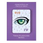 Serie de Torah Flashcards - partes del cuerpo Postal
