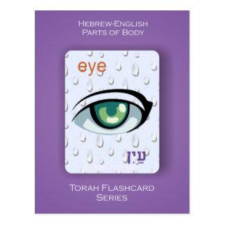 Serie de Torah Flashcards - partes del cuerpo Postales