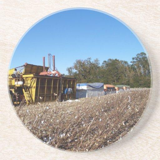 Serie del algodón--1 de 9---Constructor del módulo Posavasos Para Bebidas