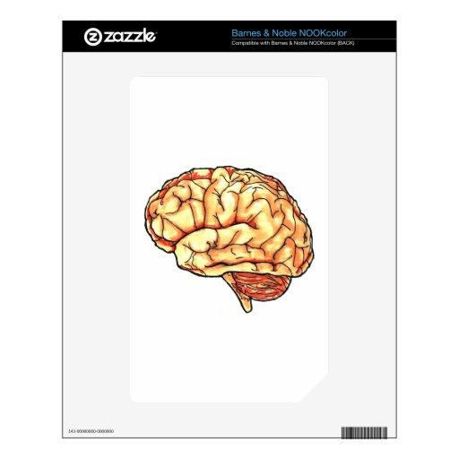Serie del cerebro calcomanía para el NOOK color