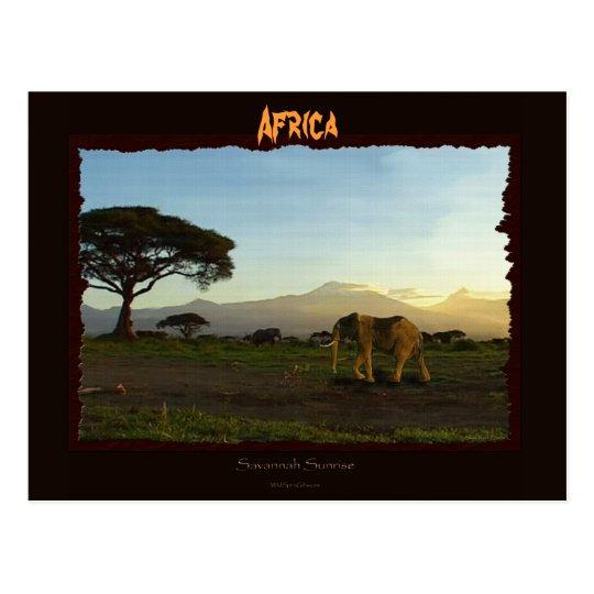Serie del elefante africano postales