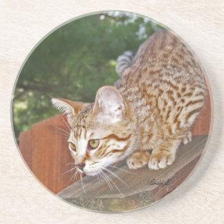 Serie del gato---Gato de la sabana del Serval---Pr Posavasos Para Bebidas