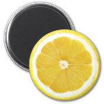 Serie del imán de la fruta - limón