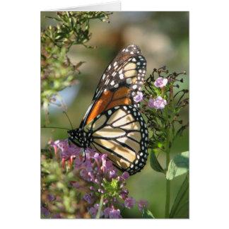 Serie del jardín de la mariposa tarjeta de felicitación
