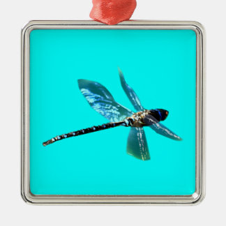 Serie del regalo de los Insecto-amantes de la Adorno Navideño Cuadrado De Metal