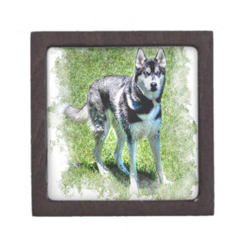 Serie del regalo del mascota de los Perro-amantes  Cajas De Regalo De Calidad