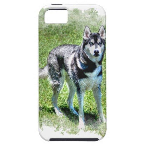 Serie del regalo del mascota de los Perro-amantes  iPhone 5 Carcasas