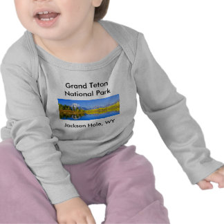 Serie magnífica 1 del parque nacional de Teton Camisetas