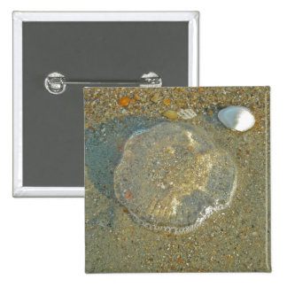 Serie trenzada de las medusas que coordina Iems Pin Cuadrada 5 Cm
