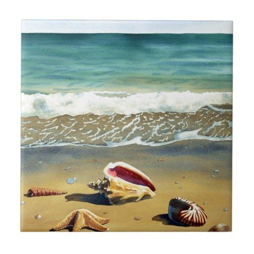 Serie V de Shell del mar Tejas Cerámicas