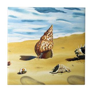 Serie VII de Shell del mar Azulejo Cuadrado Pequeño