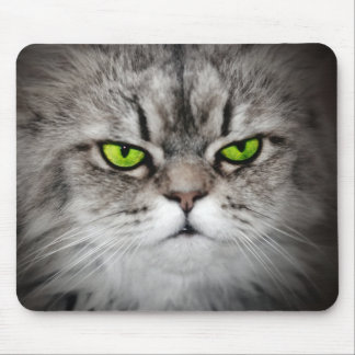 Serious cat with green eyes mouse pad