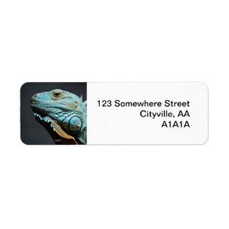 Serious Iguana Portrait Label