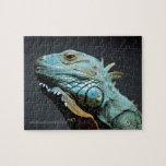 Serious Iguana Portrait Puzzles