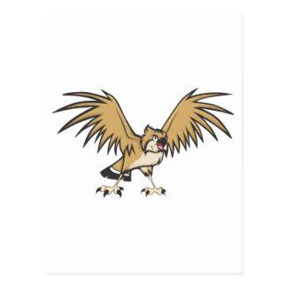 Serious Osprey Bird Postcard