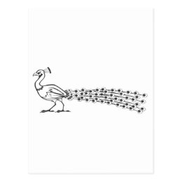 Serious Peacock Bird in Black and White Postcard