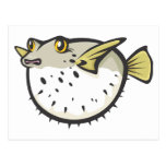 Serious Puffer Fish in Black and White Postcard