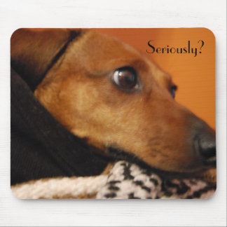 Serious puppy mouse pad