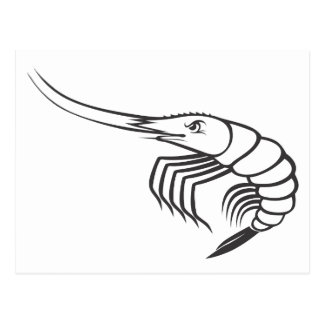Serious Shrimp in Black and White Postcard