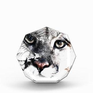 Seriously cougar animal art acrylic award