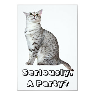 Seriously? Kitty 3.5x5 Paper Invitation Card