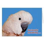 Seriously Speaking Birthday Greeting Card