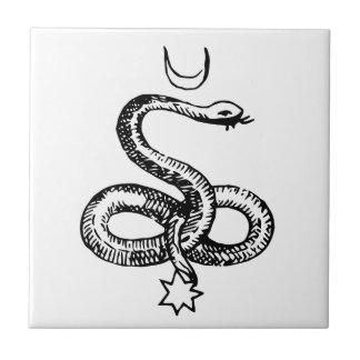 Serpent  - Pagan Symbols Small Square Tile