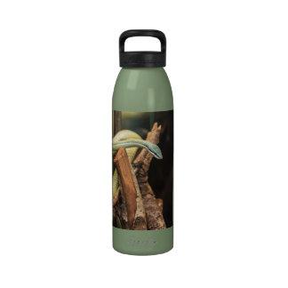Serpiente blanca y amarilla verde botella de beber