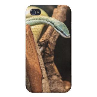 Serpiente blanca y amarilla verde iPhone 4/4S funda