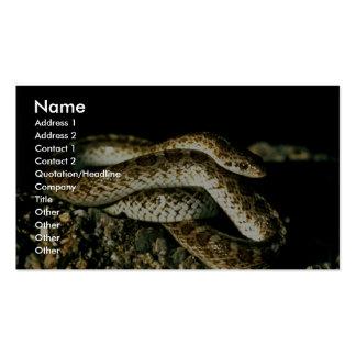 Serpiente brillante plantillas de tarjetas personales