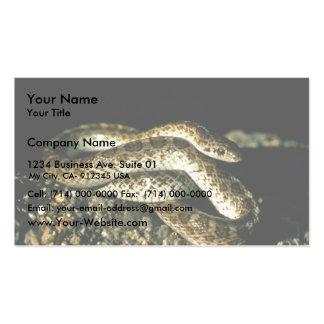 Serpiente brillante tarjetas de visita