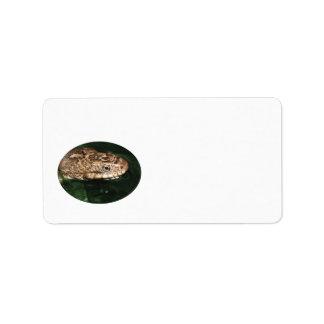 Serpiente de agua en agua esmeralda etiquetas de dirección