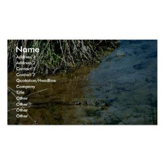 Serpiente de agua septentrional tarjeta de visita