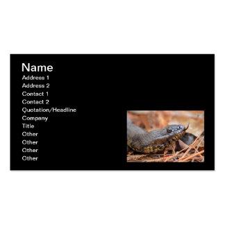Serpiente de agua tarjeta de negocio