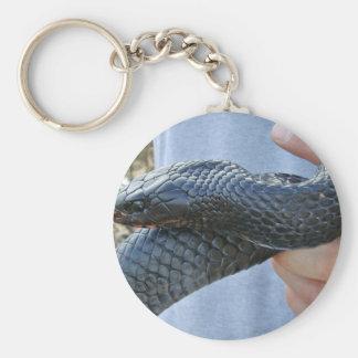 Serpiente de añil del este (couperi de los corais  llavero redondo tipo pin