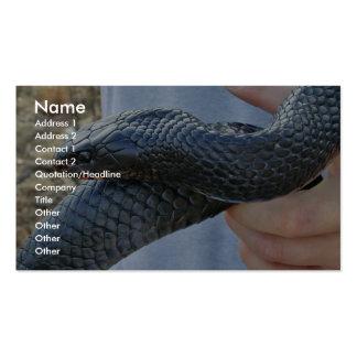 Serpiente de añil del este (couperi de los corais  tarjeta de visita