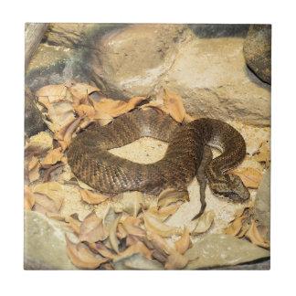 Serpiente de cascabel tejas  cerámicas