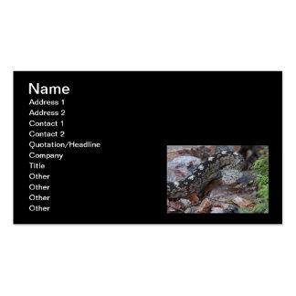 Serpiente de cascabel de cola negra tarjetas personales