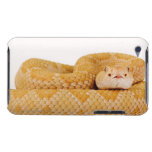 Serpiente de cascabel de diamondback occidental funda para iPod de Case-Mate