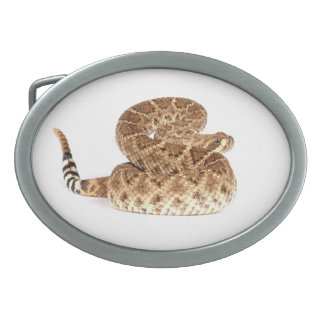 Serpiente de cascabel de Diamondback occidental Hebilla Cinturon