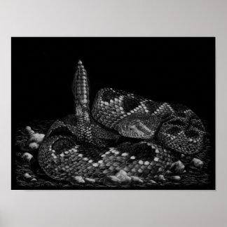 Serpiente de cascabel de Diamondback occidental Posters