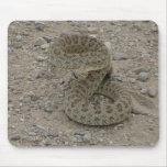 Serpiente de cascabel de pradera R0009 arrollada Tapetes De Ratones